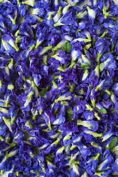 Blueberry Fruit BUTTERFLY PEA FLOWER T...